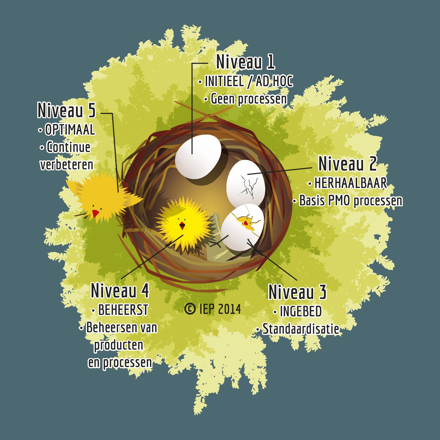 5 volwassenheidsniveaus van een PMO