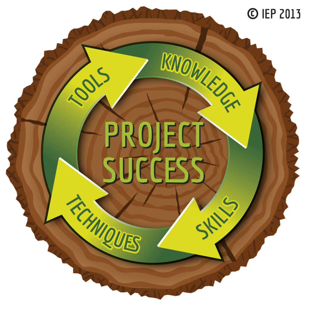 PMBoK Project success