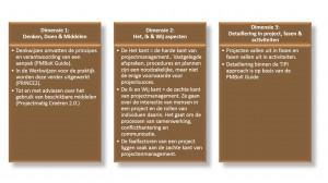 TIPI approach - 3 dimensies van projectmanagement - IEP moederthema