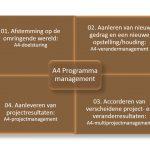 Keuzemenu Programmamanagement: visie 1 - A4 programma management