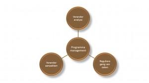 MSP - programmamanagement als brug - Keuzemenu programmamanagement -  IEP moeder thema