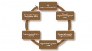 6 visies - Keuzemenu Programmamanagement - IEP moeder thema