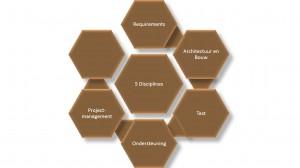 RUP - requirements - IEP moederthema